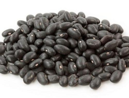 Crni grah